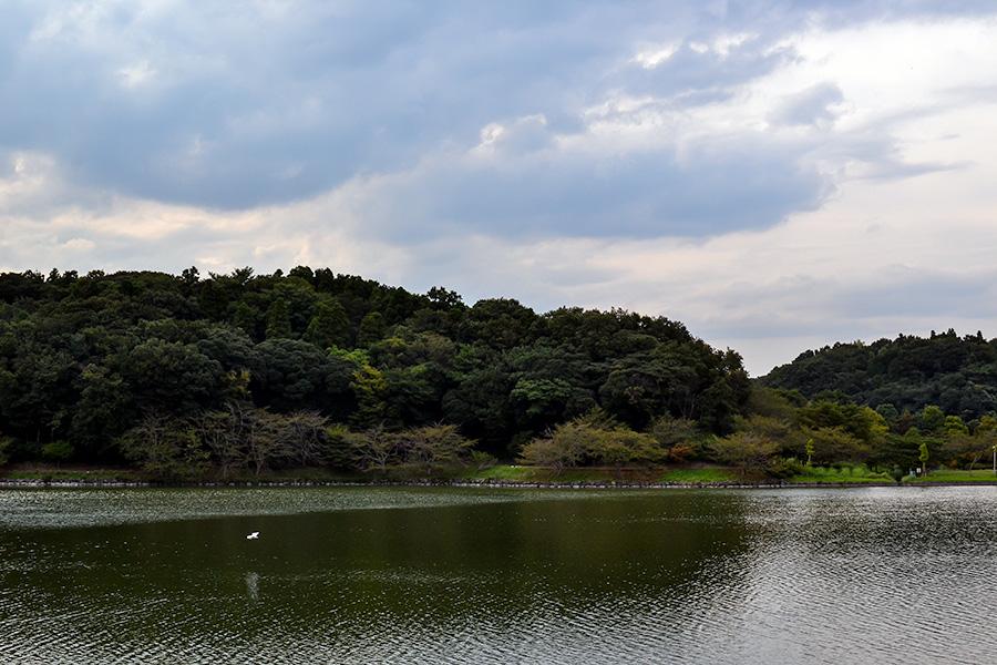 袖ケ浦公園09