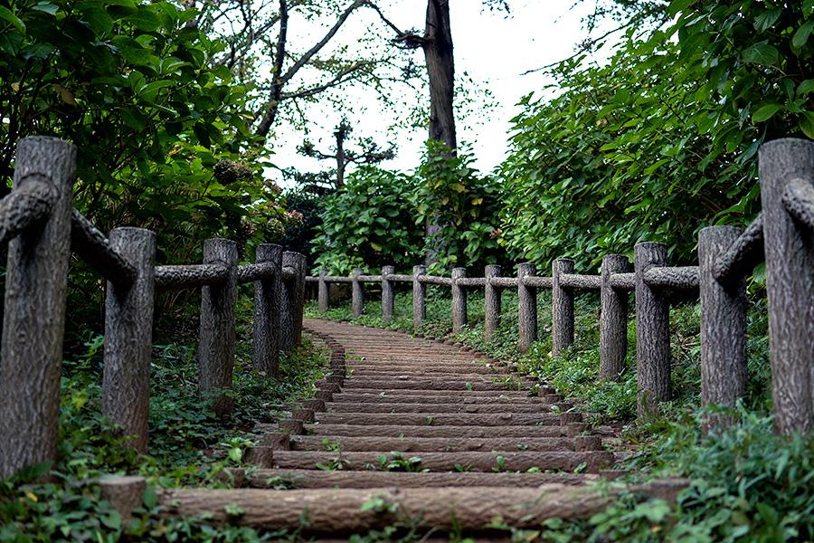 袖ケ浦公園10