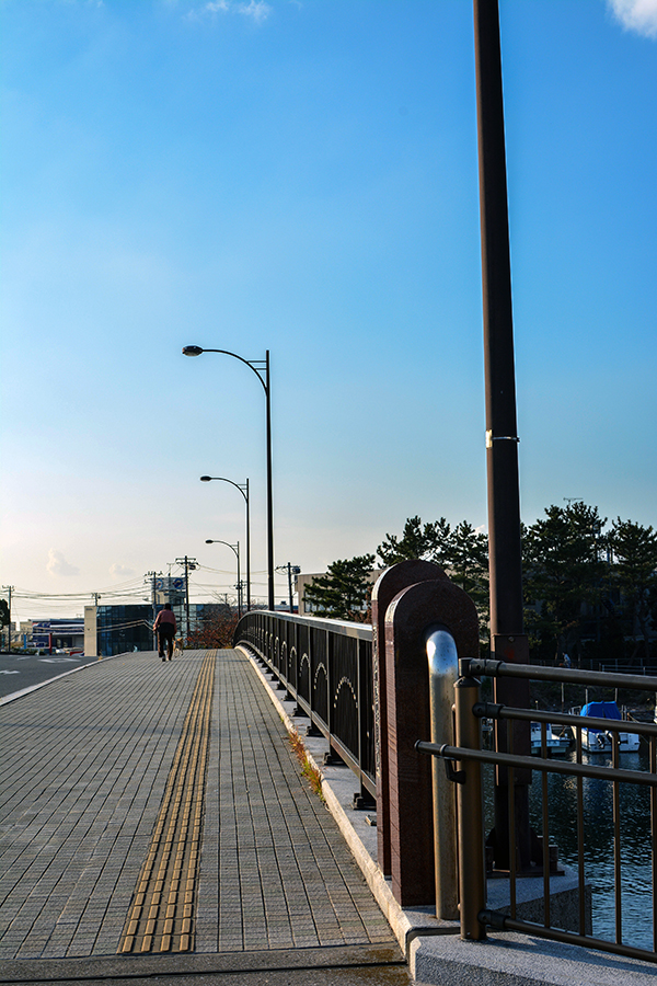 市役所通り大橋09