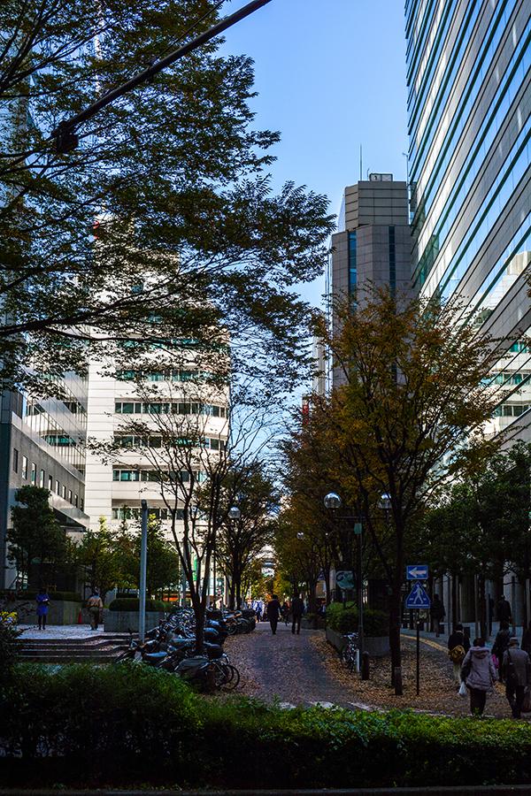 西新宿12