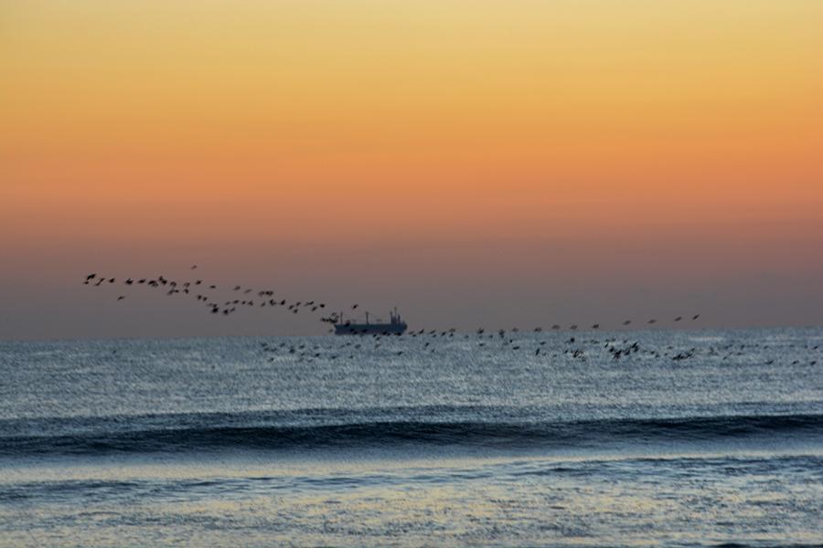 一宮海岸の日の出10