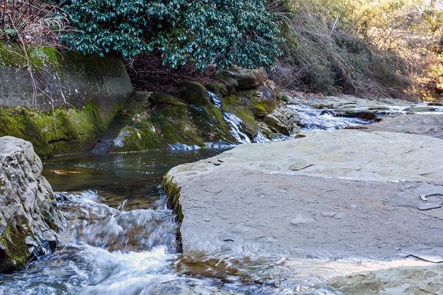 粟又の滝20