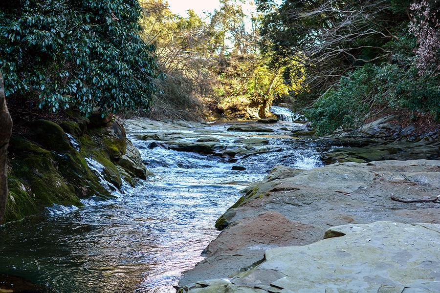 粟又の滝23