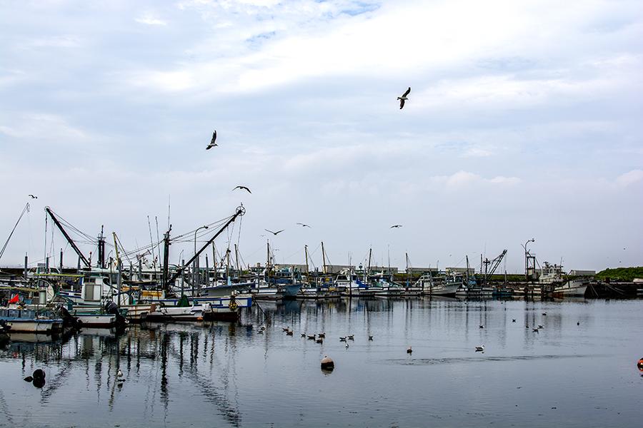 富津漁港05