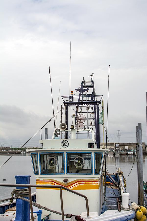 富津漁港06