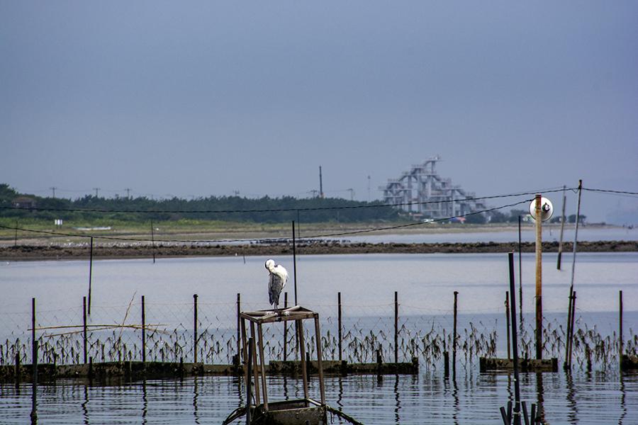 富津漁港16