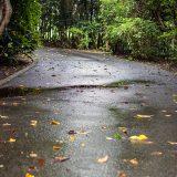 2015.09 – 富津市 -曇り時々雨-(5)