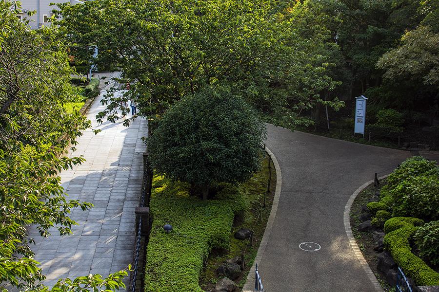 港の見える丘公園15